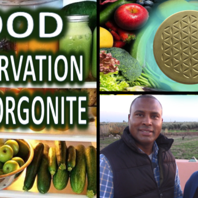 Food Preservation with Orgonite (Video)