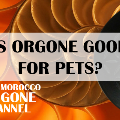 Is orgonite good for my pets? (video)