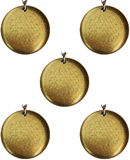 EMF Protection Orgone Shungite Pendants for Sale, set of five