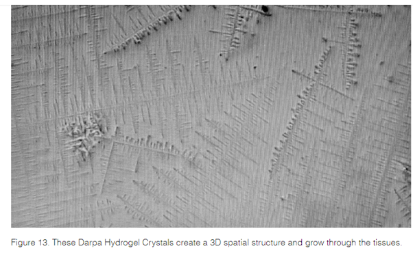 graphene oxide Darpa Hydrogel in PCR tests 2 Live Call: Graphene and Graphene Oxide Basics